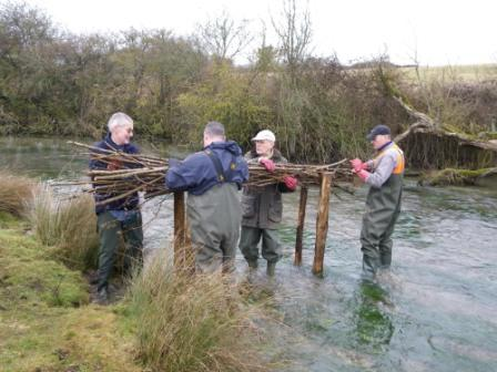 Traditional river groynes being built in the River Dun