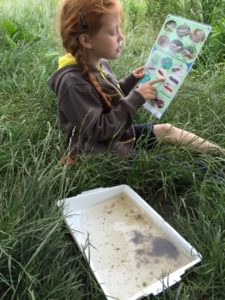 A Brownie takes part in a fun day of 'river dipping'
