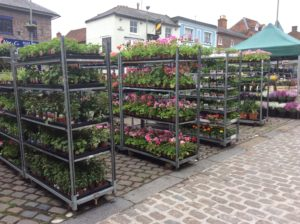 stands filled with lush green and flowering plants at the Hungerford charter market